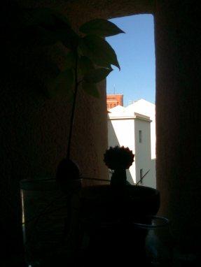 Foto5669 - Copia